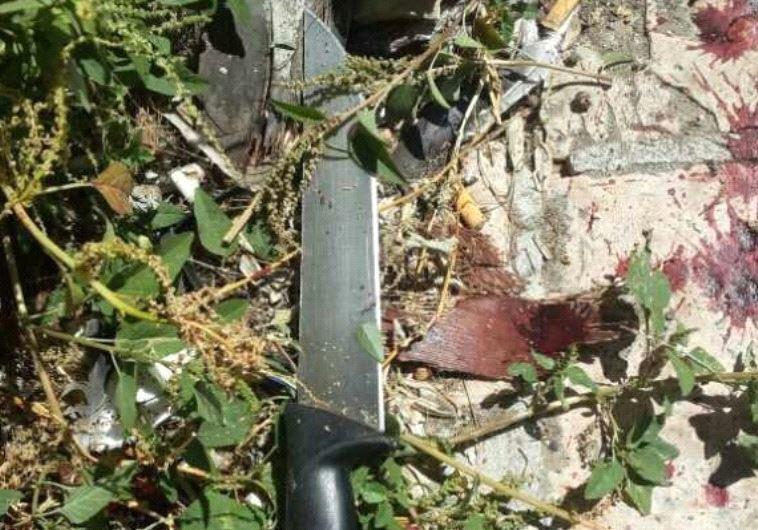 סכין בזירת האירוע סמוך למערת המכפלה. צילום: דוברות המשטרה