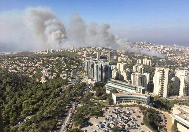 השריפה בחיפה, אזור האוניברסיטה. צילום: קובי רבינוביץ'