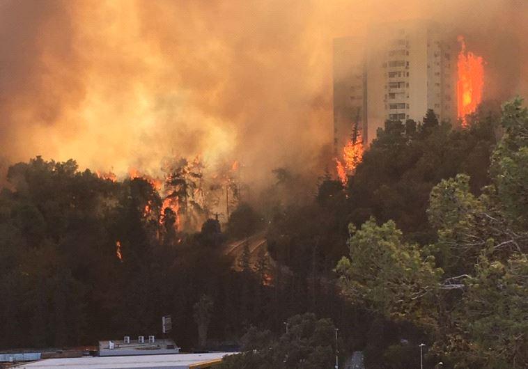 שריפה בשכונת רוממה בחיפה. צילום: יונתן הללי