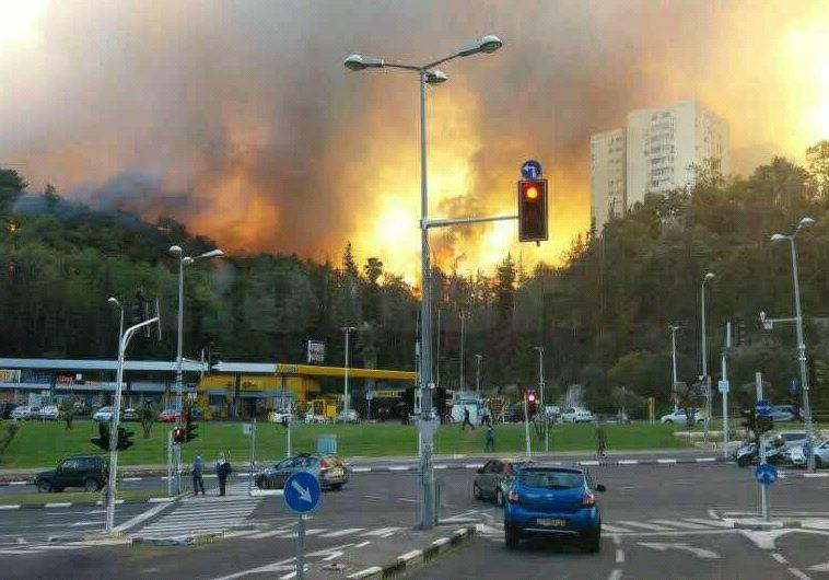 נאבקים בלהבות בחיפה. צילום: אבשלום ששוני