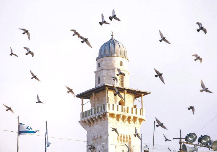 מסגד אל אקצה בירושלים. צילום: פלאש 90