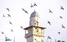 מסגד אל אקצא בירושלים