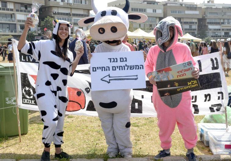 אקטיביזם במסיבת פורים בתל אביב. צילום: אנונימוס