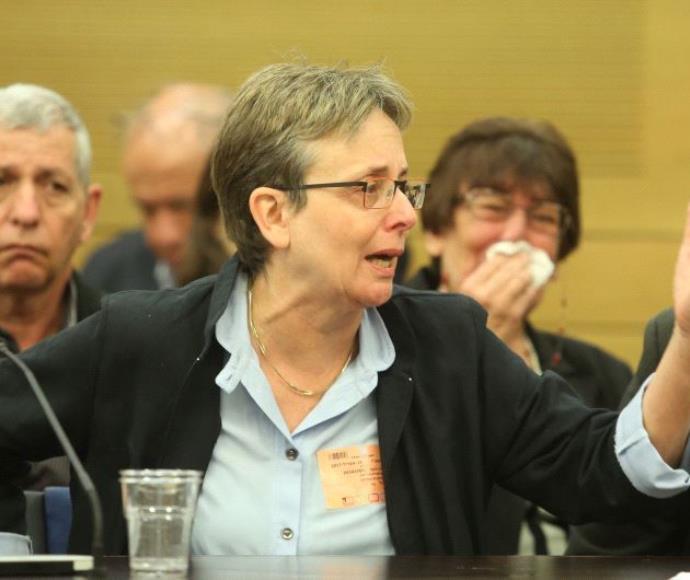 לאה גולדין בדיון בוועדה לביקורת המדינה