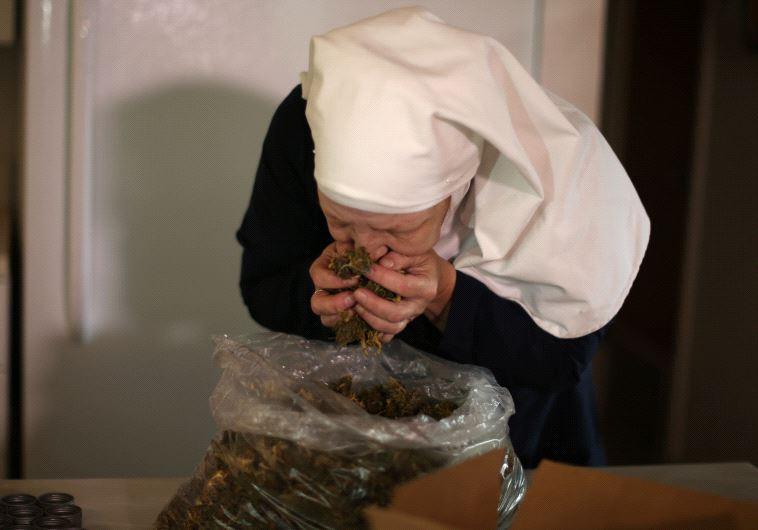 השילוש הקדוש מבחינתן הוא צמח המריחואנה. צילום: רויטרס
