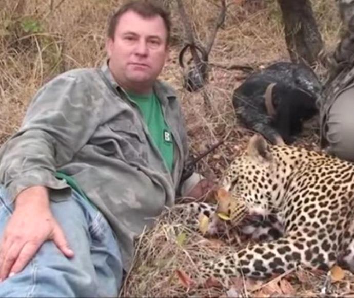 הרג פיל וקיבל בדיוק את מה שמגיע לו
