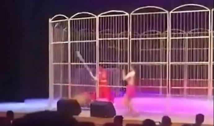 נמר תוקף מאמן קרקס לעיני הקהל