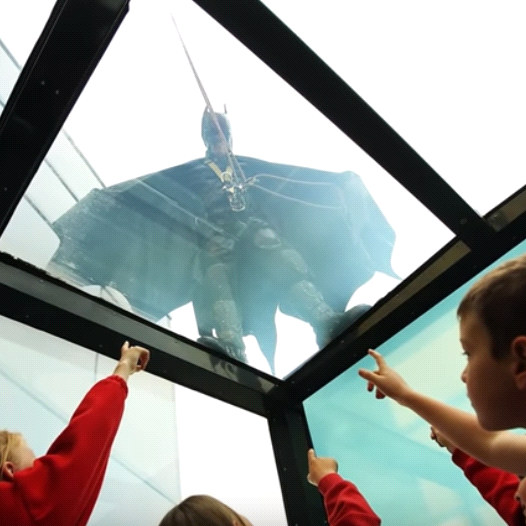באטמן על הגג! צילום מסך: יוטיוב