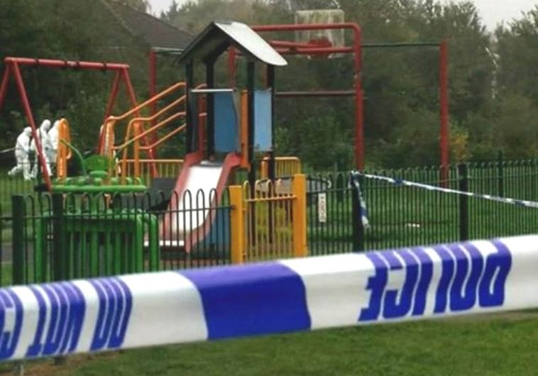 הפארק בו אירעה התקיפה. צילום מסך